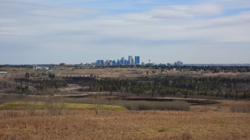 DSC_0937 Calgary closer